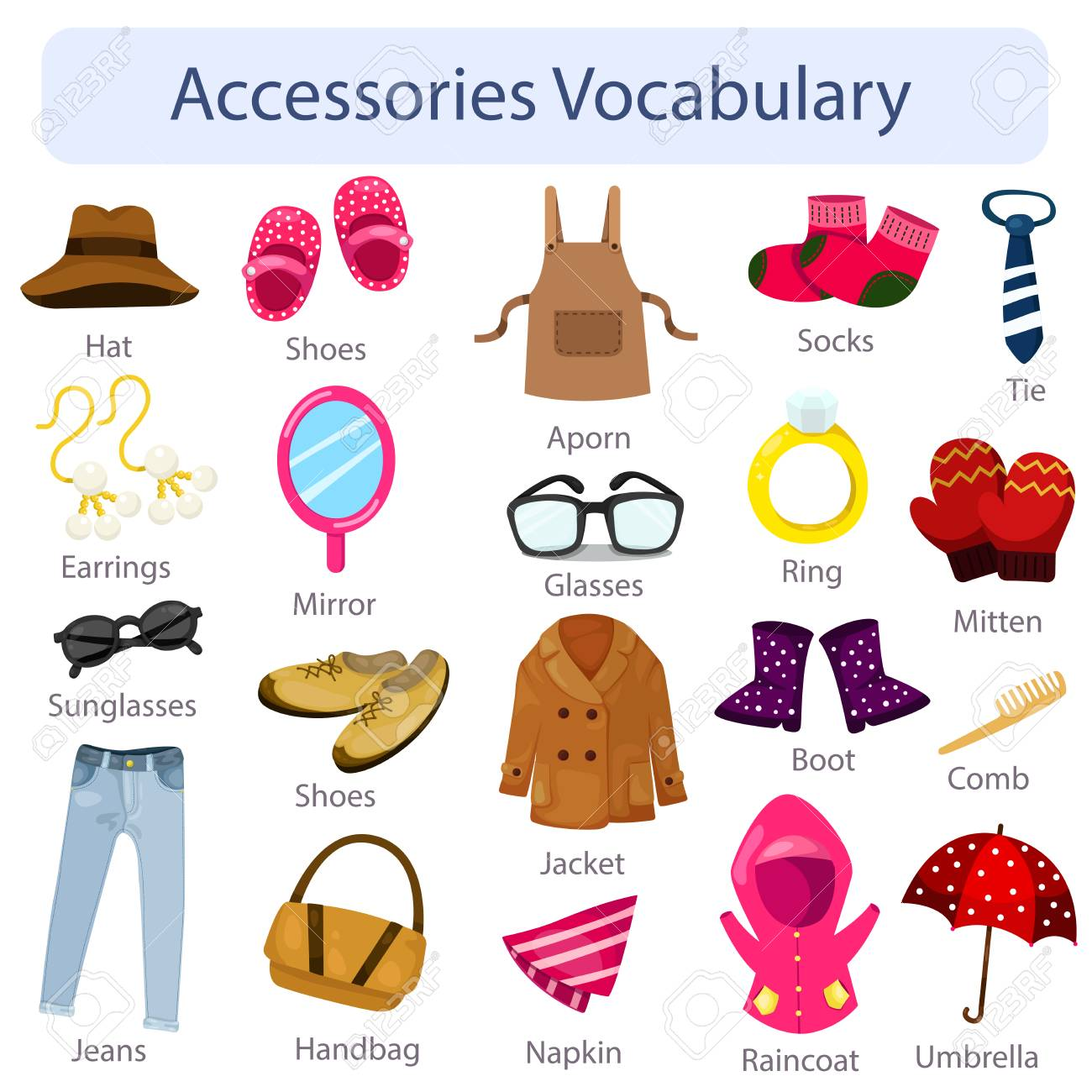 General Introduction Vocabulary Review Accessories Tomi Digital